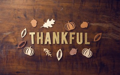 7 reasons why you should be grateful today
